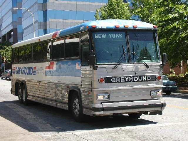 greyhound_mc12_2453.jpg